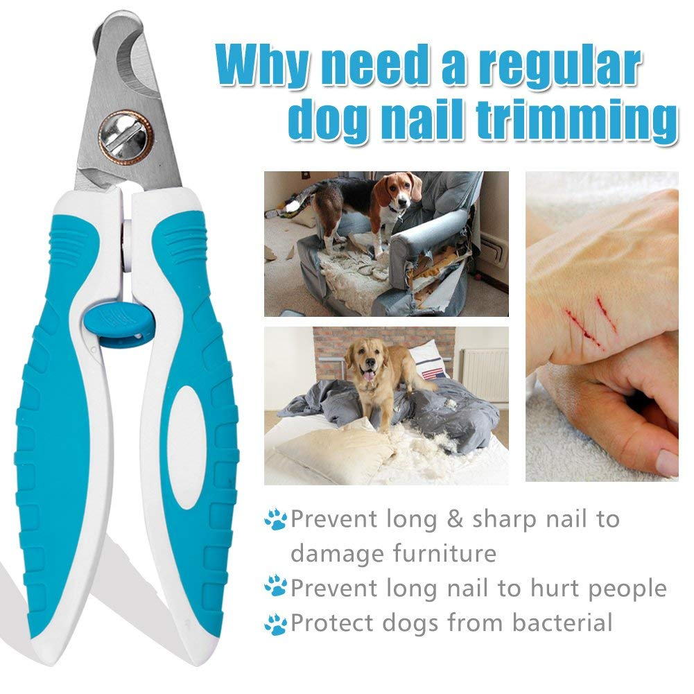 cyrico Sharp Dog Nail Clippers Trimmers with Quick Sensor, Pet Nail Clippers with Safety Guard for Small Large Dogs and Cats, Dog Nail Trimmer for Thick Nails with Free Nail File & Dog Toothbrushes